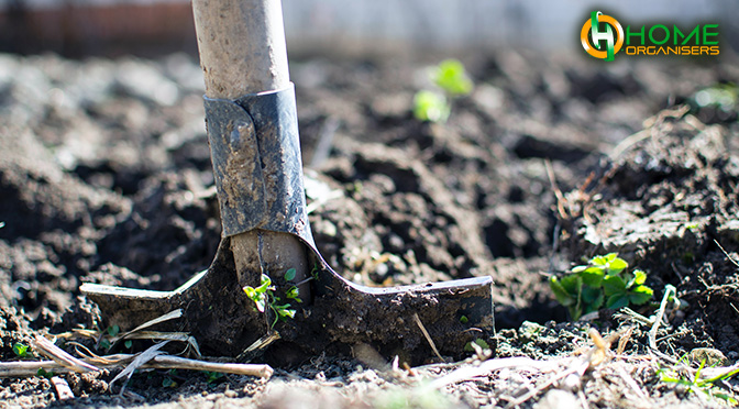 GARDENING BENEFITS FOR OVER 60s